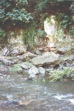 Fault exposed along Shoal Creek